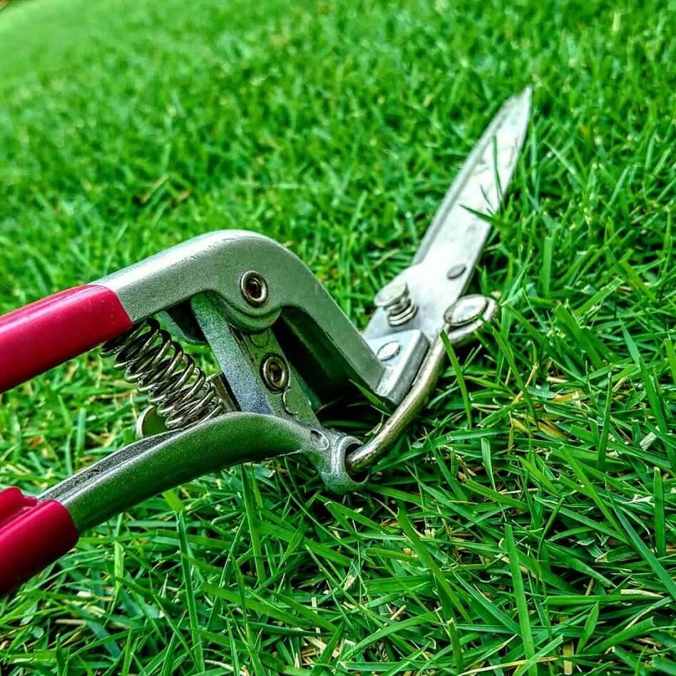 芝刈りハサミ