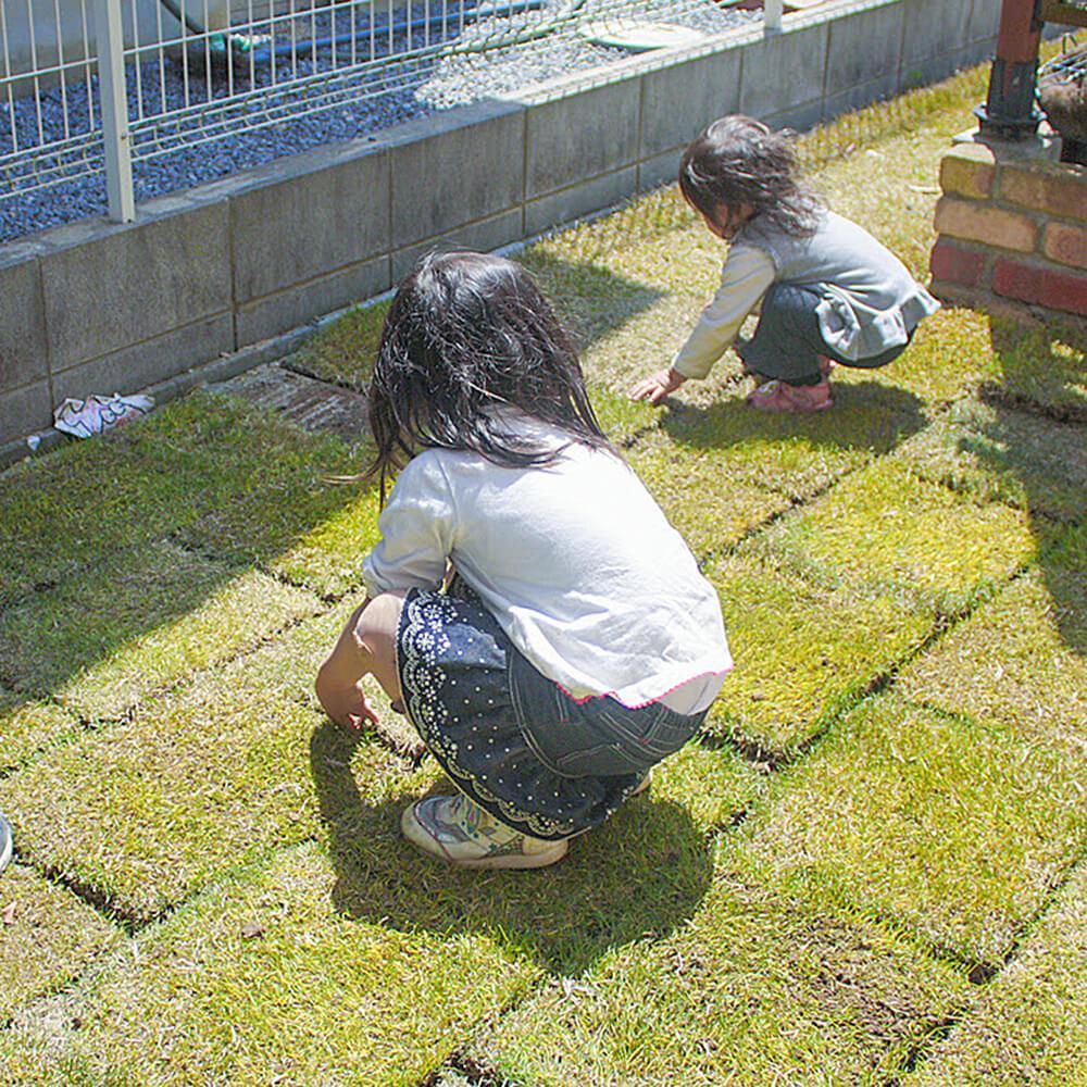 芝張り作業