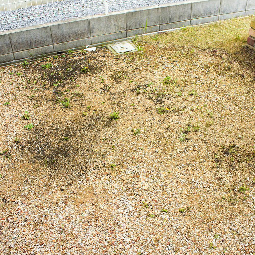 芝生を植える場所