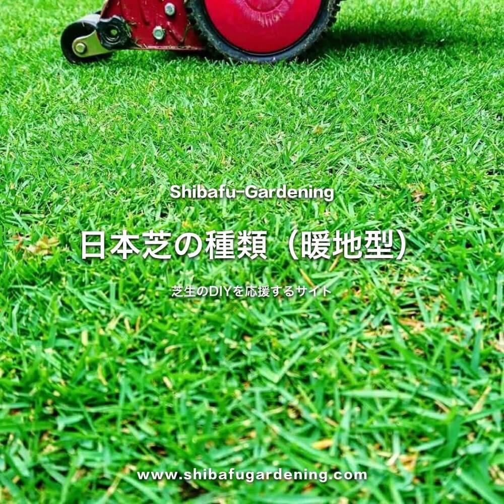 日本芝の種類