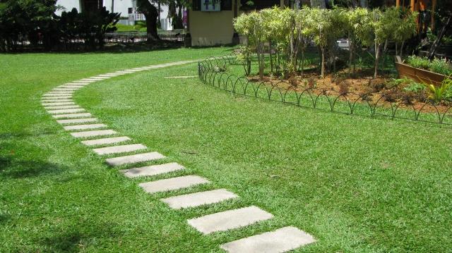 芝生の飛び石