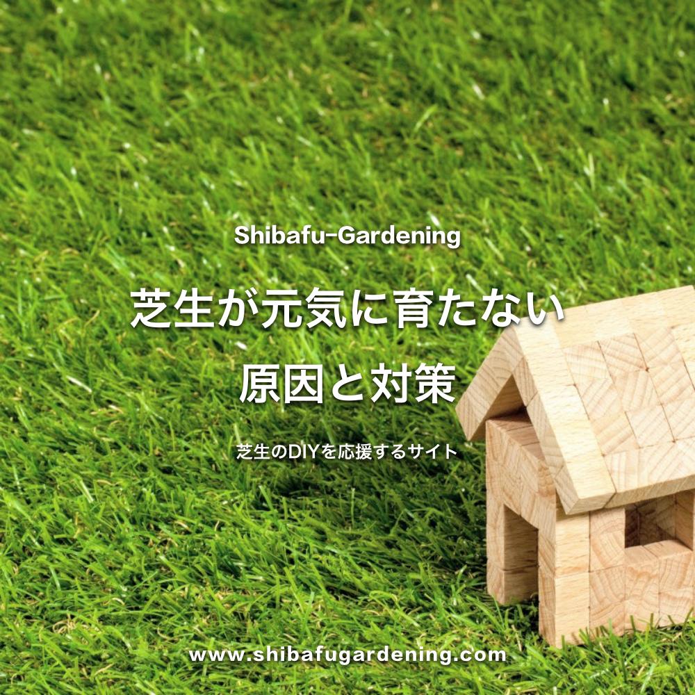 芝生が元気に育たない原因と対策