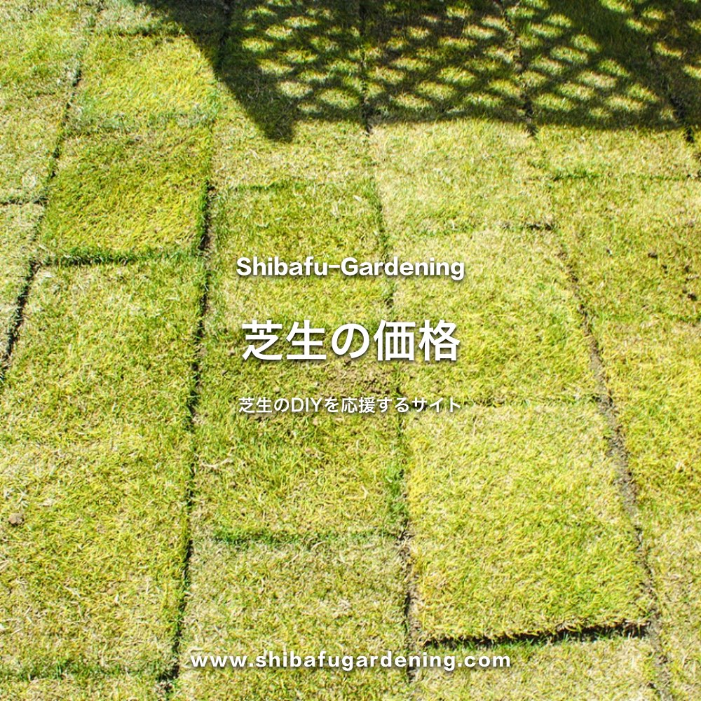 芝生の価格
